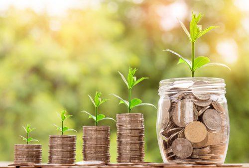 geldboompje laten groeien
